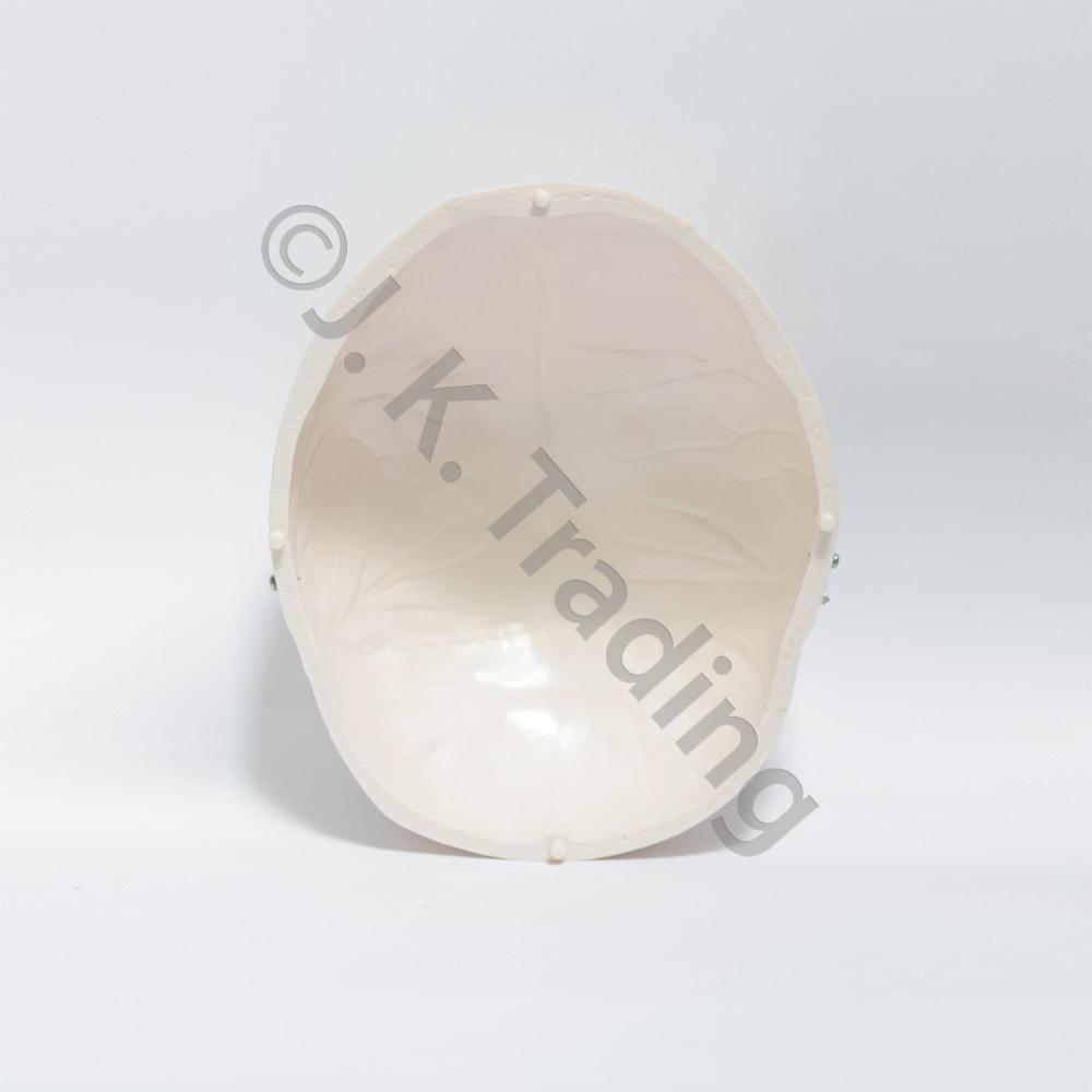 deluxe-skull-9593-1000