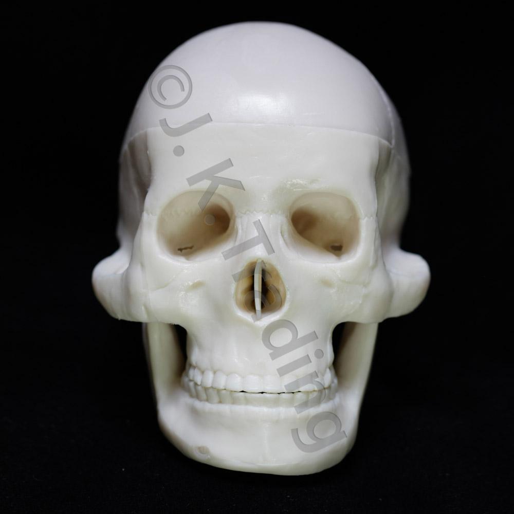 skull-mini-9730-1000